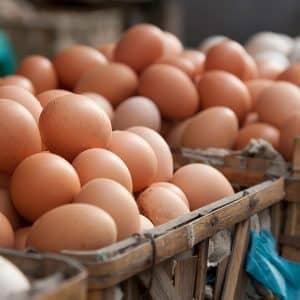 huevo mitos alimentación complementaria